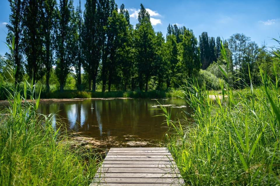 Mokřady Jablonné – ráj prolidi ipřírodu