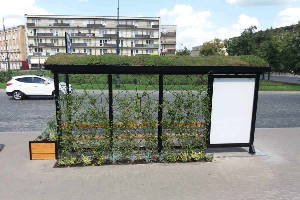 Green Bus Stops
