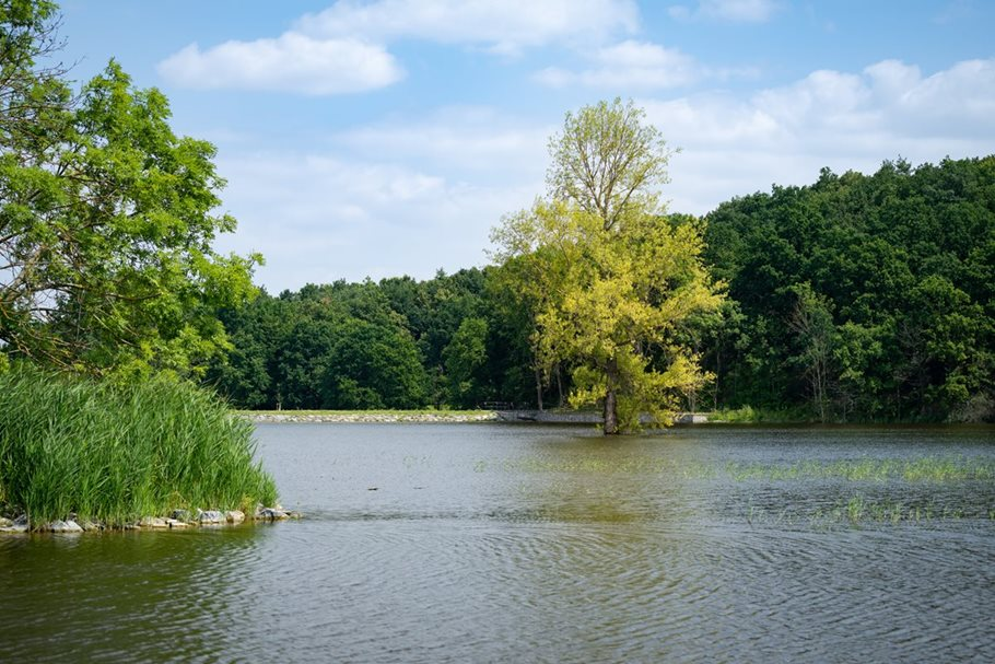 Krajinný park Lítožnice