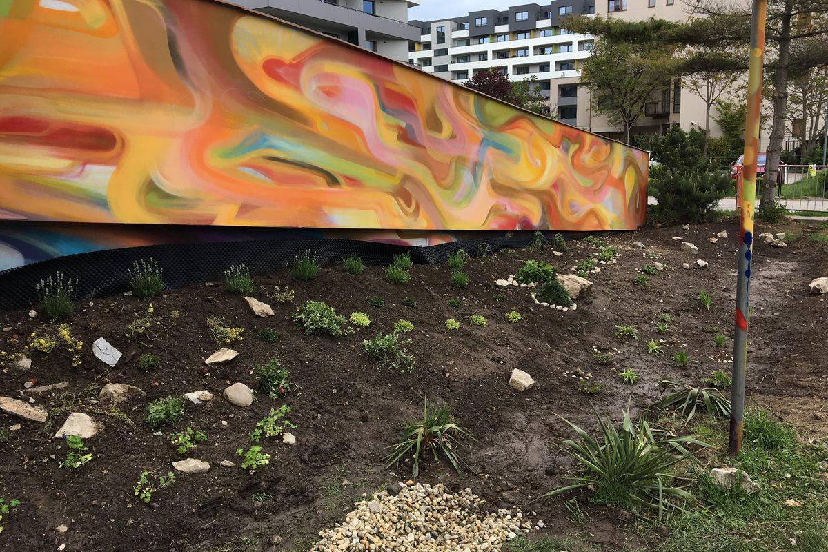 Rain Garden at Geriatrics