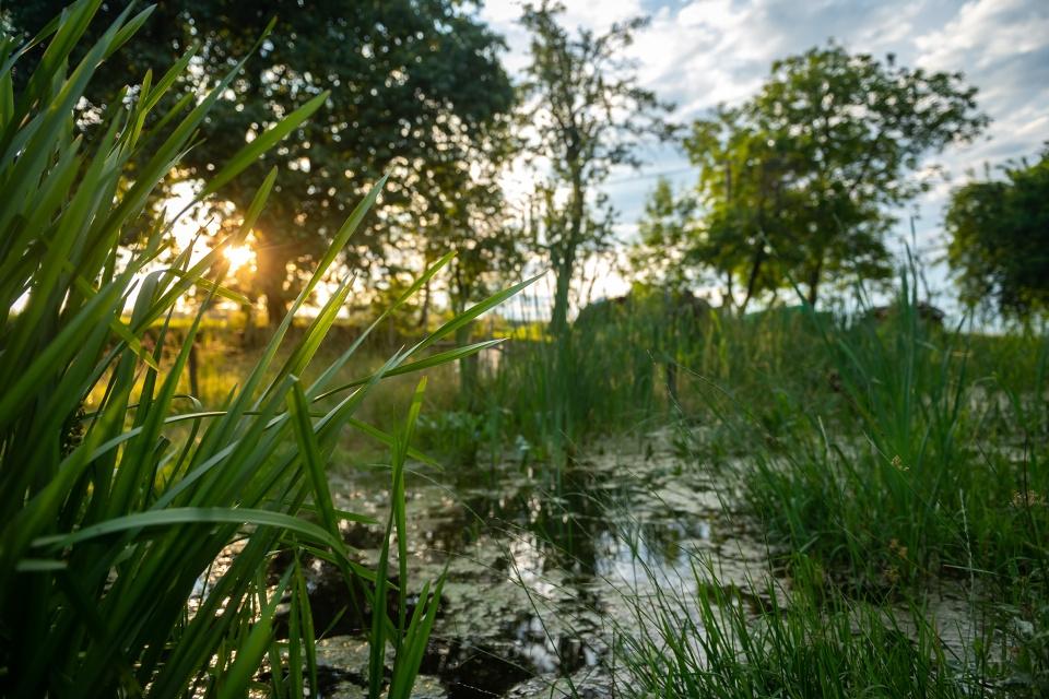 Systém malých tůněk amezí kzadržování vody