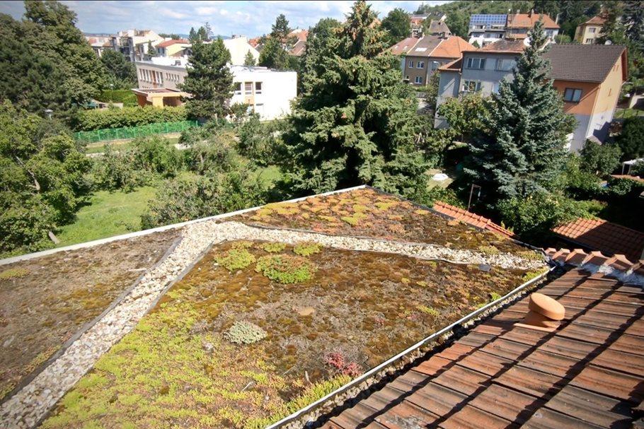 Renovation of a family house inBrno