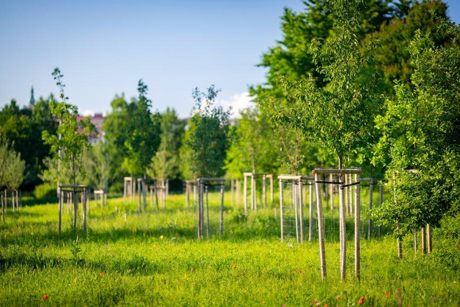 Škrlovec Environmental Park