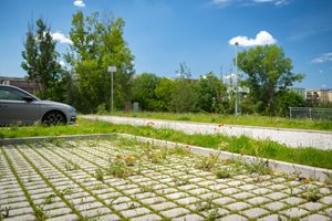 Veškeré parkovací plochy jsou propustné. Umožňují tak zasakování vody.
