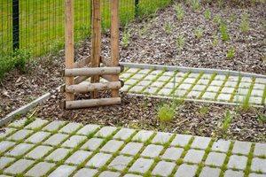 Voda ve veřejném prostoru SUOMI Hloubětín má mnoho prostoru pro zasáknutí, například kolem stromů, které ji potřebují ke zdravému růstu.