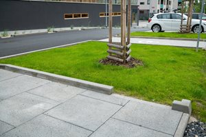 Voda ve veřejném prostoru SUOMI Hloubětín má mnoho prostoru pro zasáknutí. Například kolem stromů, které ji potřebují ke zdravému růstu. Umožní to děravé obrubníky.