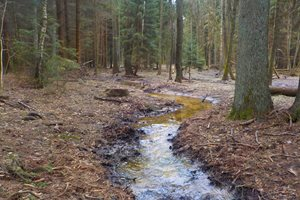 Stav po realizaci - mělké přírodní meandrující koryto.
