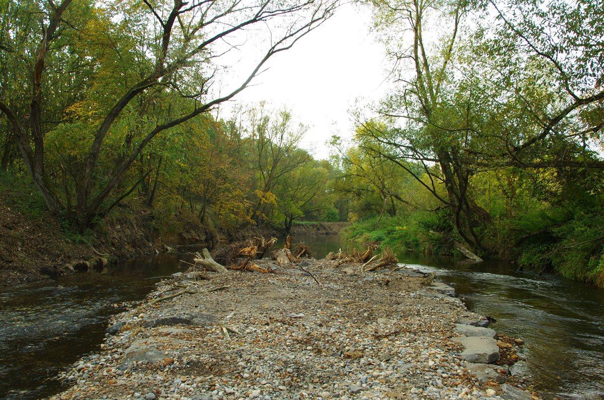 Podpora samovolné renaturace řeky Moravy uŠtěpánova