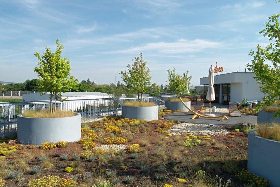 Zelená střecha firmy Delikomat